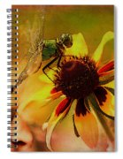 Mosquito Hawk Spiral Notebook