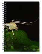 Mosquito Spiral Notebook