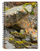 Moss And Lichens In The Scottish Highlands Spiral Notebook