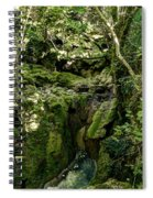 Moss And Stones By The Turquoise Forest Pond On A Summer Day No4 Spiral Notebook