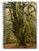 Moss-covered Bigleaf Maple  Spiral Notebook