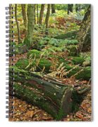 Moss Covered Logs On The Forest Floor Spiral Notebook