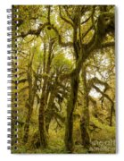 Moss-covered Maple Grove Spiral Notebook