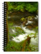 Moss Covered Trees Foregound Eagle Creek Spiral Notebook