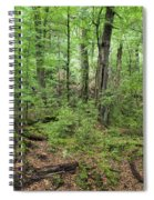Moss Covered Trees In Forest, Lord Spiral Notebook