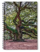 Moss Draped Limbs Spiral Notebook