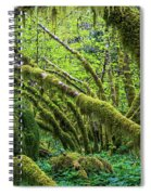 Moss Grows On Vine Maple Trees  Acer Spiral Notebook