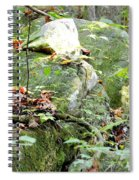 Moss Rock 3 Spiral Notebook