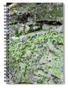 Moss Rock Spiral Notebook