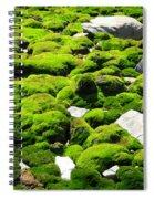 Mosscape Spiral Notebook