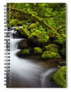 Mossy Arch Cascade Spiral Notebook
