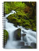 Mossy Creek Cascade Spiral Notebook