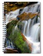 Mossy Falls Spiral Notebook