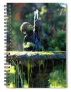 Mossy Fountain Spiral Notebook