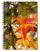 Mossy Lichen Tree Leaves Art Prints Autumn Spiral Notebook