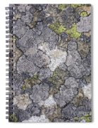 Mossy Mouldy Rock Texture Spiral Notebook