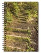 Mossy Path Spiral Notebook