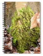 Mossy Rock Abstract 2013 Spiral Notebook