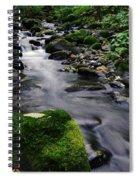 Mossy Rock Streamside Spiral Notebook