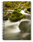Mossy Rocks Along Lavis Brook In The Spiral Notebook