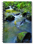 Mossy Rocks And Moving Water  Spiral Notebook
