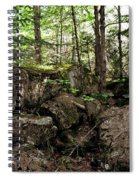 Mossy Rocks In The Forest Spiral Notebook