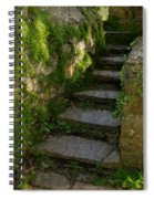 Mossy Steps Spiral Notebook