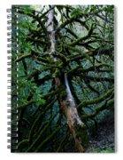Mossy Tree Spiral Notebook