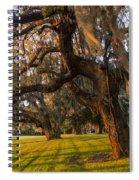 Mossy Trees At Sunset Spiral Notebook