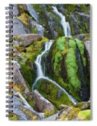 Mossy Waterfall At Snow Lake Spiral Notebook