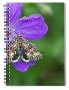 Moth Feeding On Geranium Sanguineum Spiral Notebook