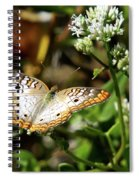 Moth On White Flower Spiral Notebook