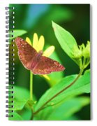 Moth On Yellow Spiral Notebook