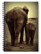 Mother And Baby Elephant In Black And White Spiral Notebook