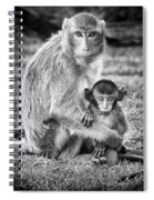 Mother And Baby Monkey Black And White Spiral Notebook