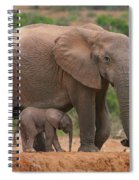 Mother And Calf Spiral Notebook