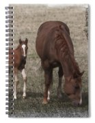 Mother And Son Love Spiral Notebook
