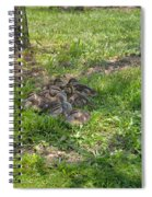 Mother Duck With Nest Spiral Notebook