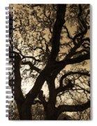 Mother Nature's Design Spiral Notebook