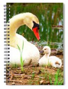 Mother Swan And Baby Spiral Notebook