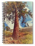 Mother Tree Spiral Notebook