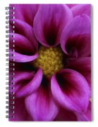 Mothers Flowers Spiral Notebook