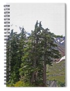 Mount Baker Area Wilderness Spiral Notebook