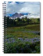 Mount Baker Lupine Meadows Spiral Notebook