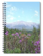 Mount Katahdin And Wild Flowers Spiral Notebook