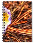 Mount Margaret Spring 14379 Spiral Notebook