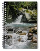 Mount Rainier Falls Spiral Notebook