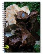 Mount Trashmore - Series Xvi Spiral Notebook