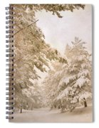 Mountain Adventure In The Snow Spiral Notebook