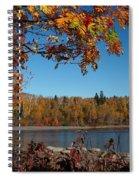 Mountain Ash In Autumn Spiral Notebook